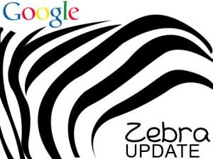Google Zebra, una actualización orientada al e-Commerce